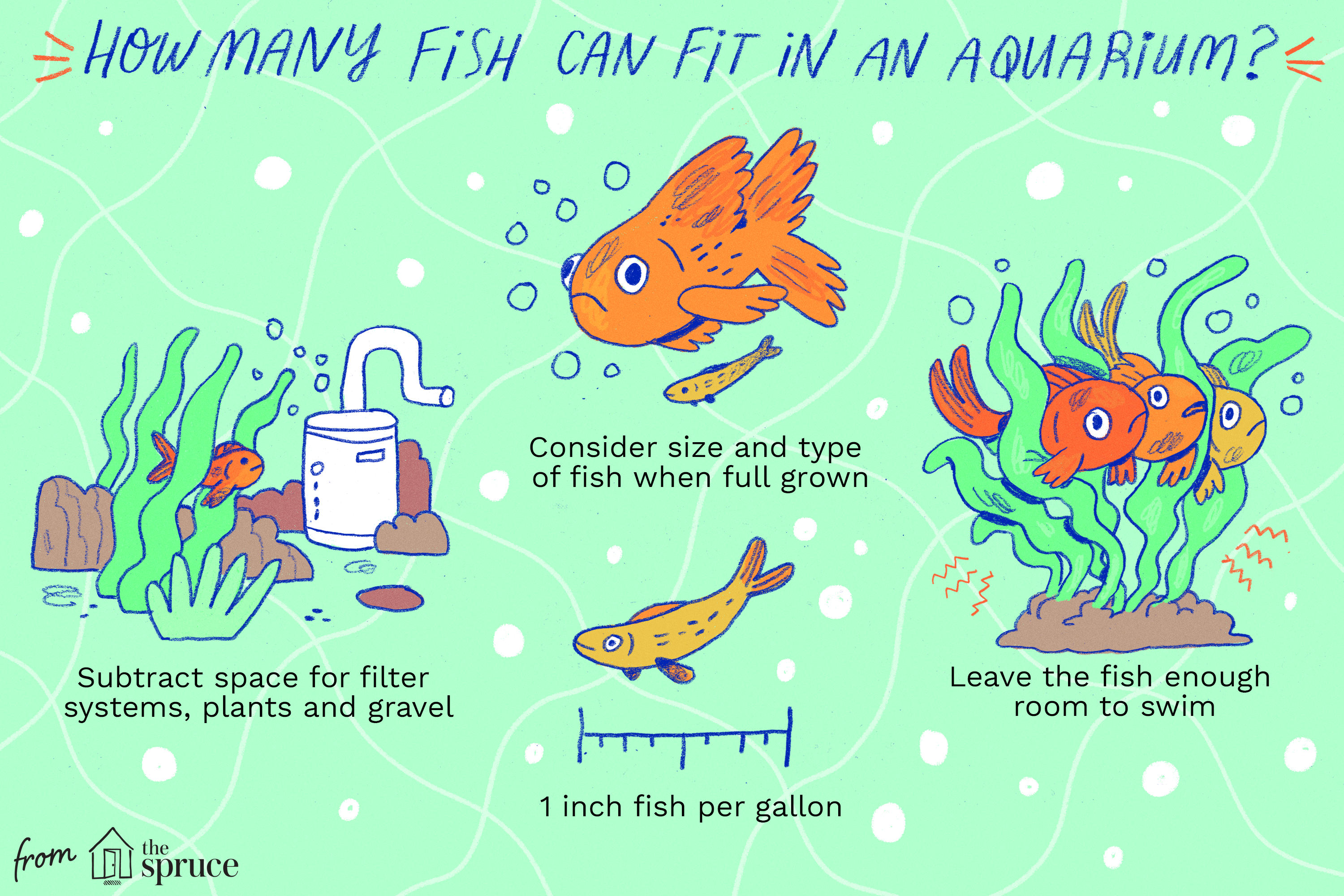 illustration of how many fish can fit in an aquarium?
