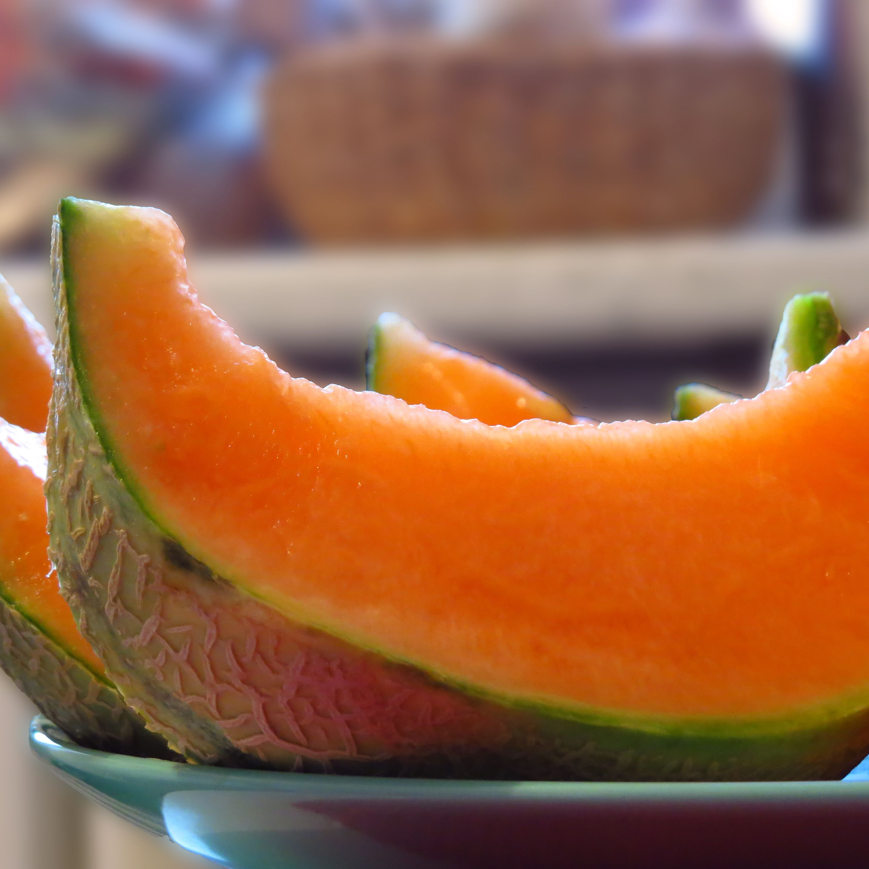 Can Cats Eat Cantaloupe High content of dietary fiber in cantaloupes promotes healthy movements of bowel and maintains digestive health. can cats eat cantaloupe