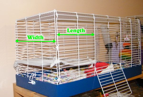 Easy No-Sew Hamster Hammock