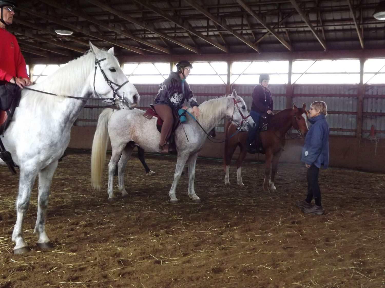 A horse riding lesson
