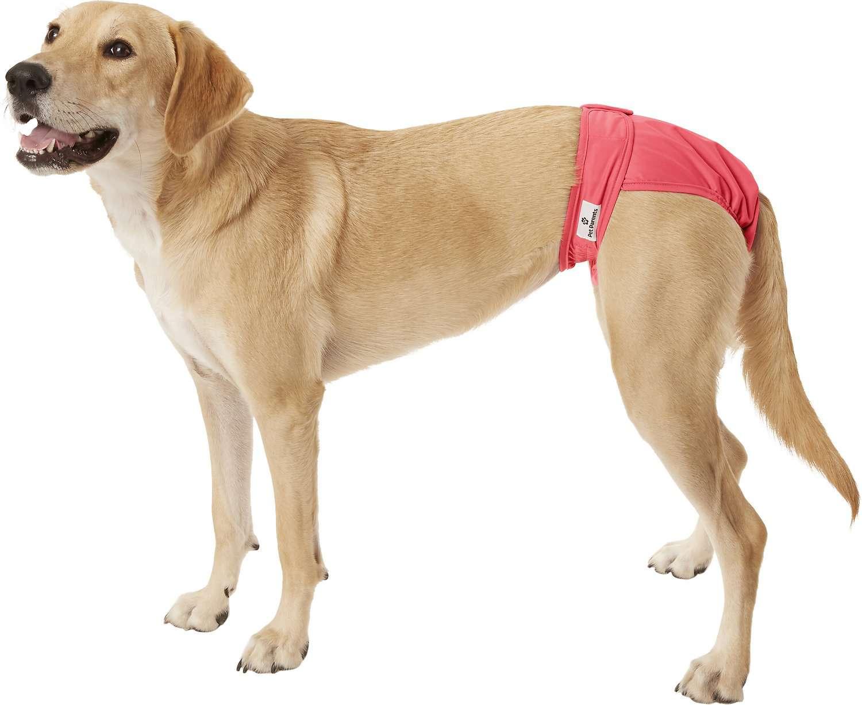 Pet Parents Washable Dog Diapers