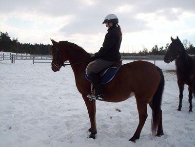 Chica montada en un caballo.