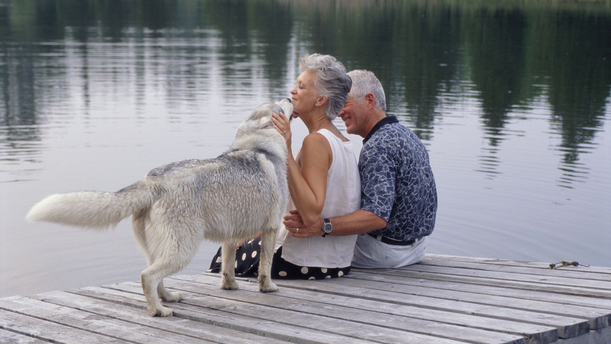 What to Do When Your Dog Gets Old