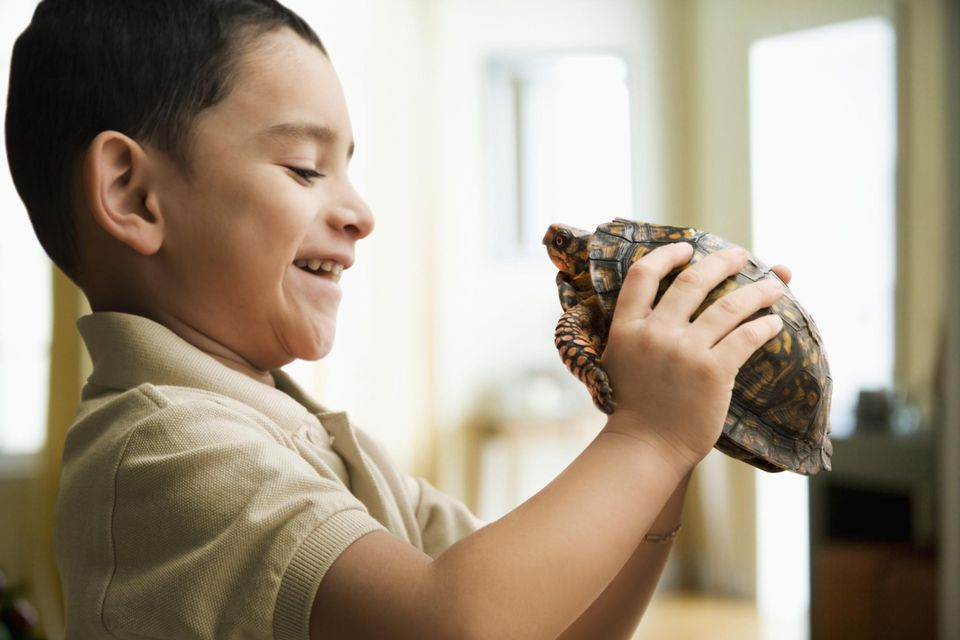 Boy holding pet tortoise