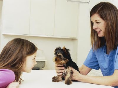 Puppy Vaccination Side Effects