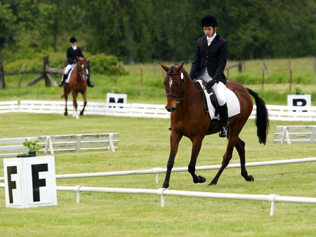 dressage arena letters and dimensions