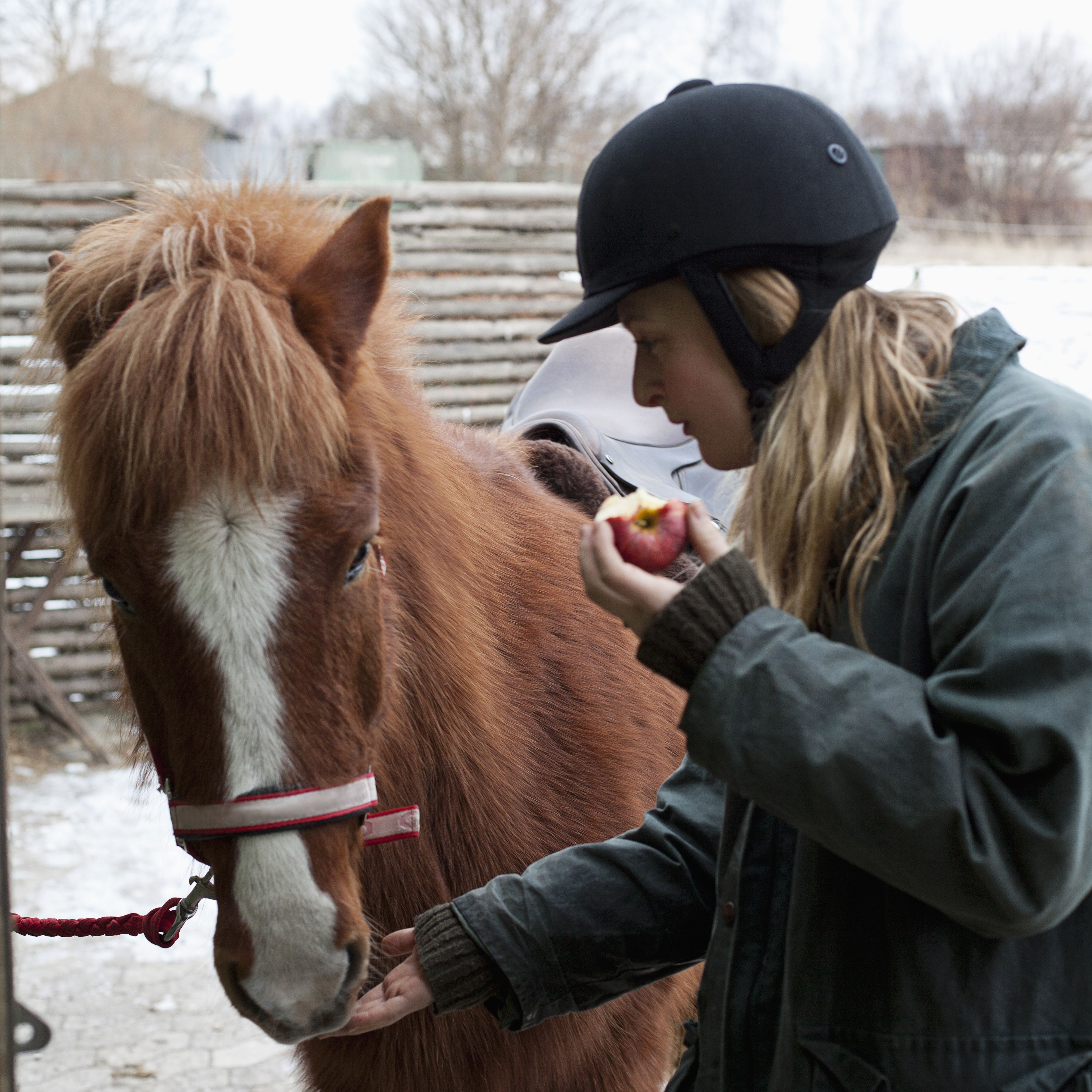 Woman feeding apple to horse outdoors