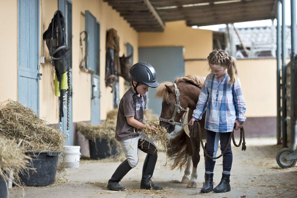 Children and Shetland pony