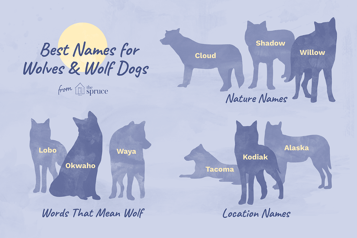 Pet Wolf and Wolfdog Names