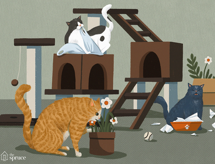 cat bad behaviors illustration