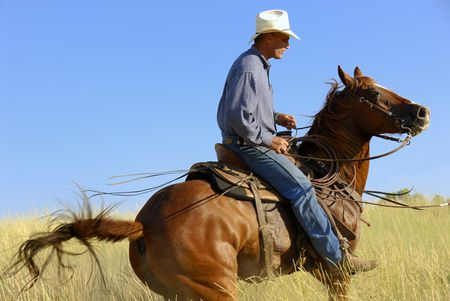 Six Common Western Horse Riding Bits