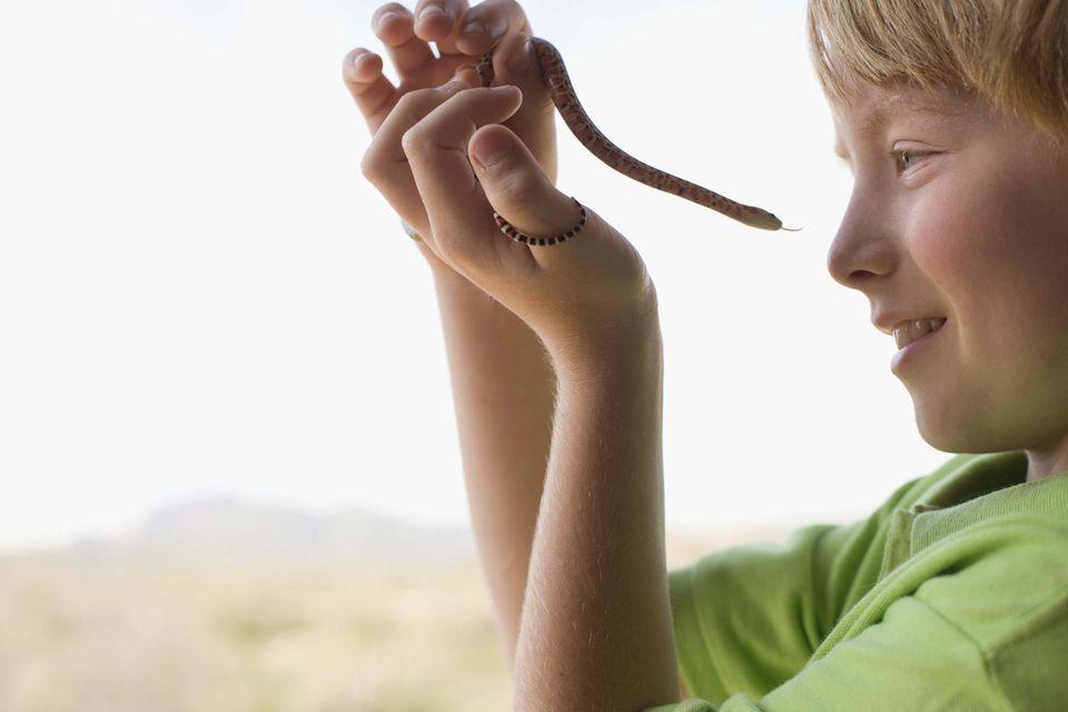 Boy holding a corn snake