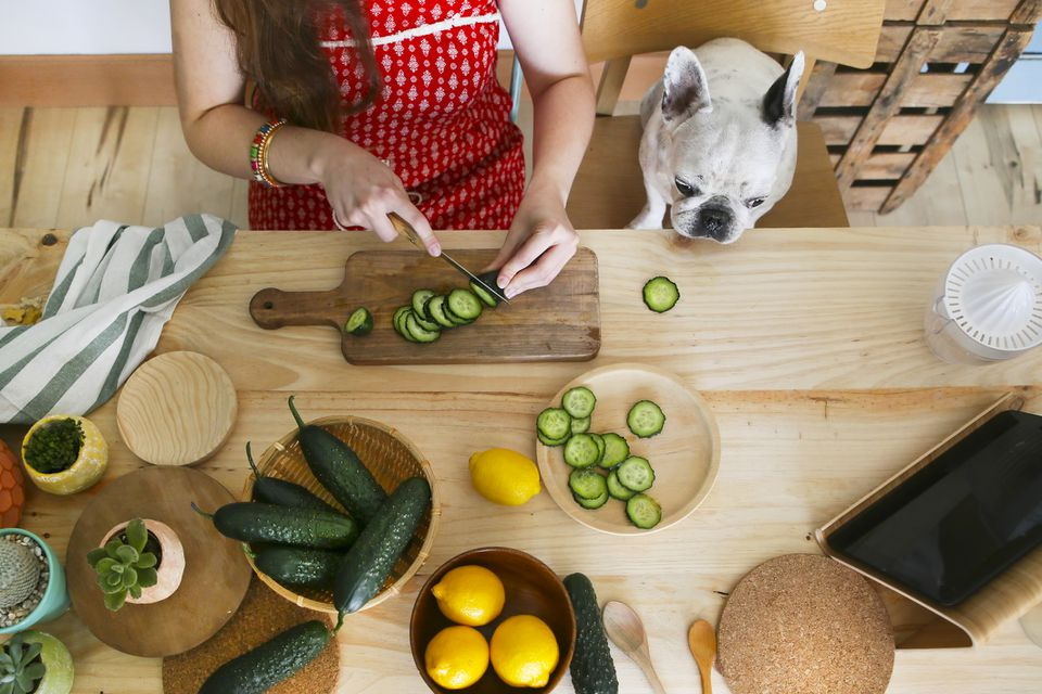 Dog staring at cucumber being prepared on a table