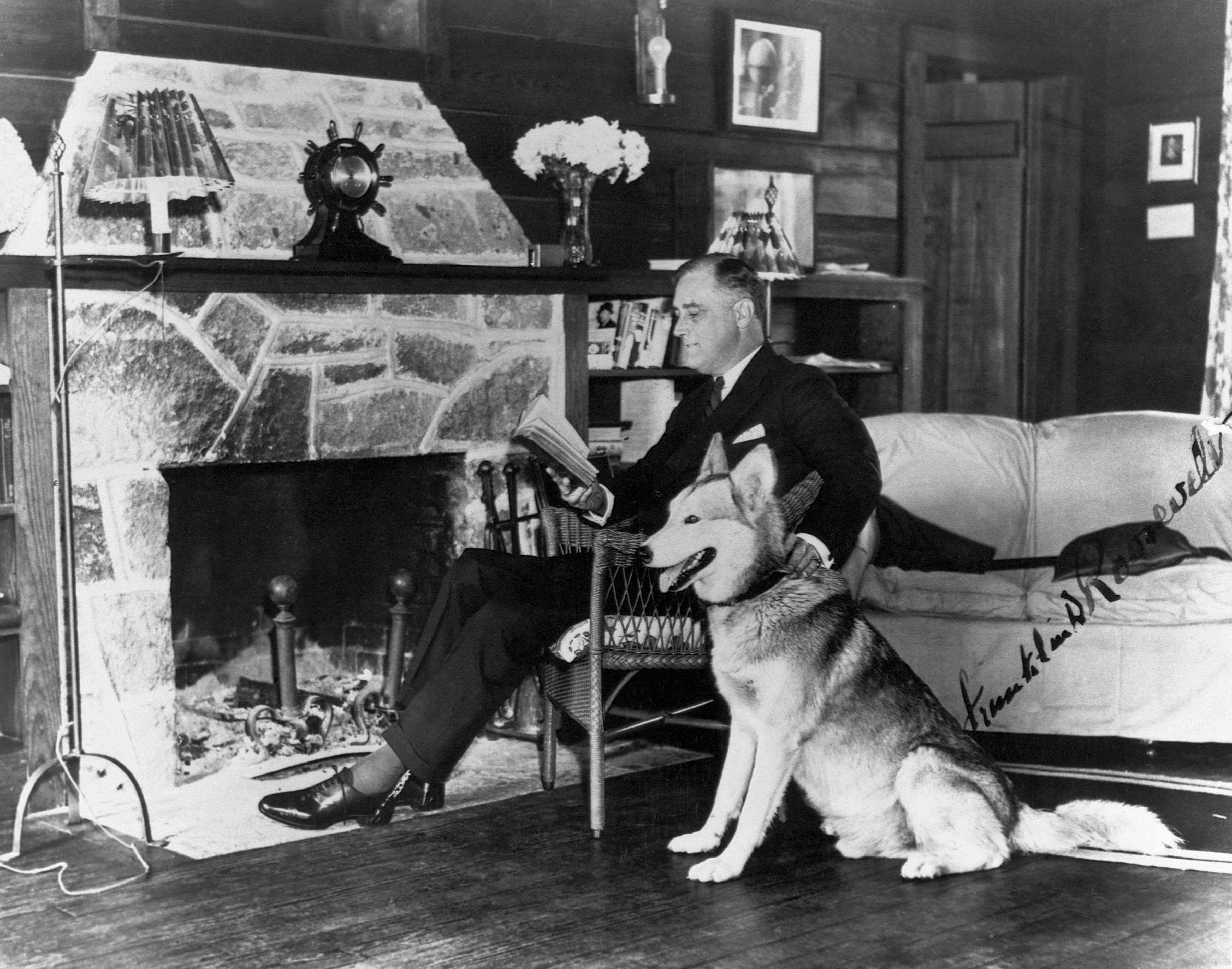 Franklin D. Roosevelt Leyendo con Husky Siberiano