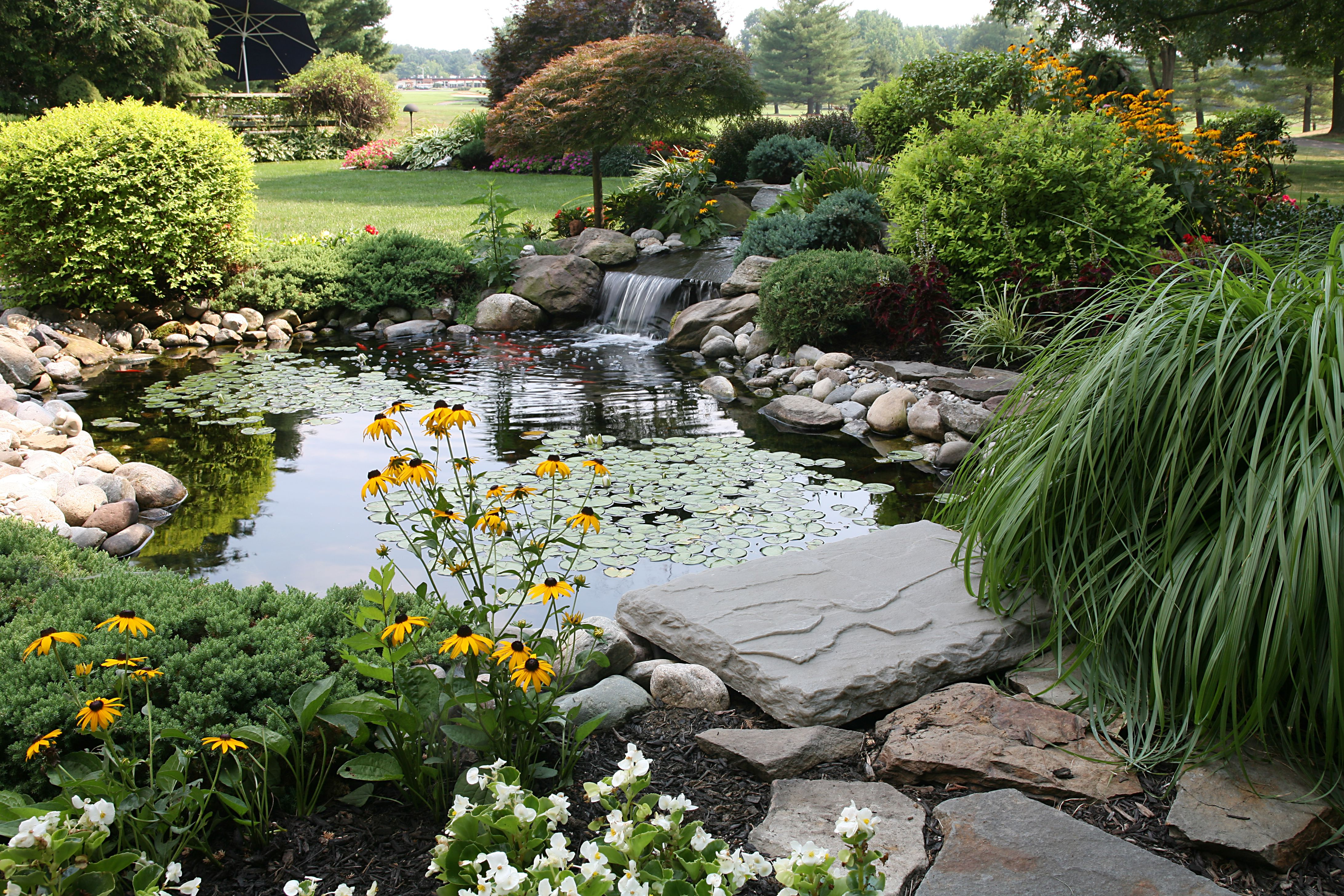 a backyard full of flowers, a pond, and waterfall