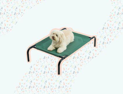 Best Cooling Dog Beds