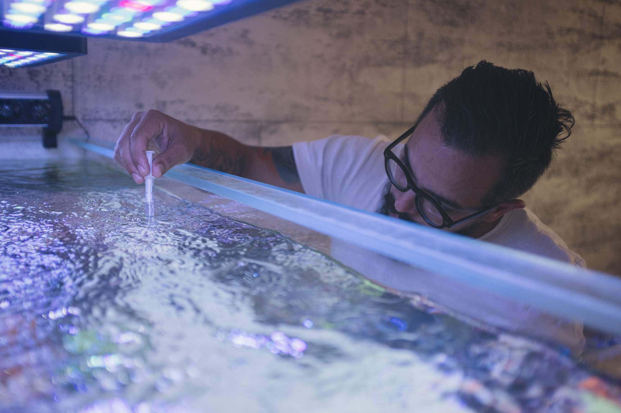 Bearded man testing quality of water in his reef tank.