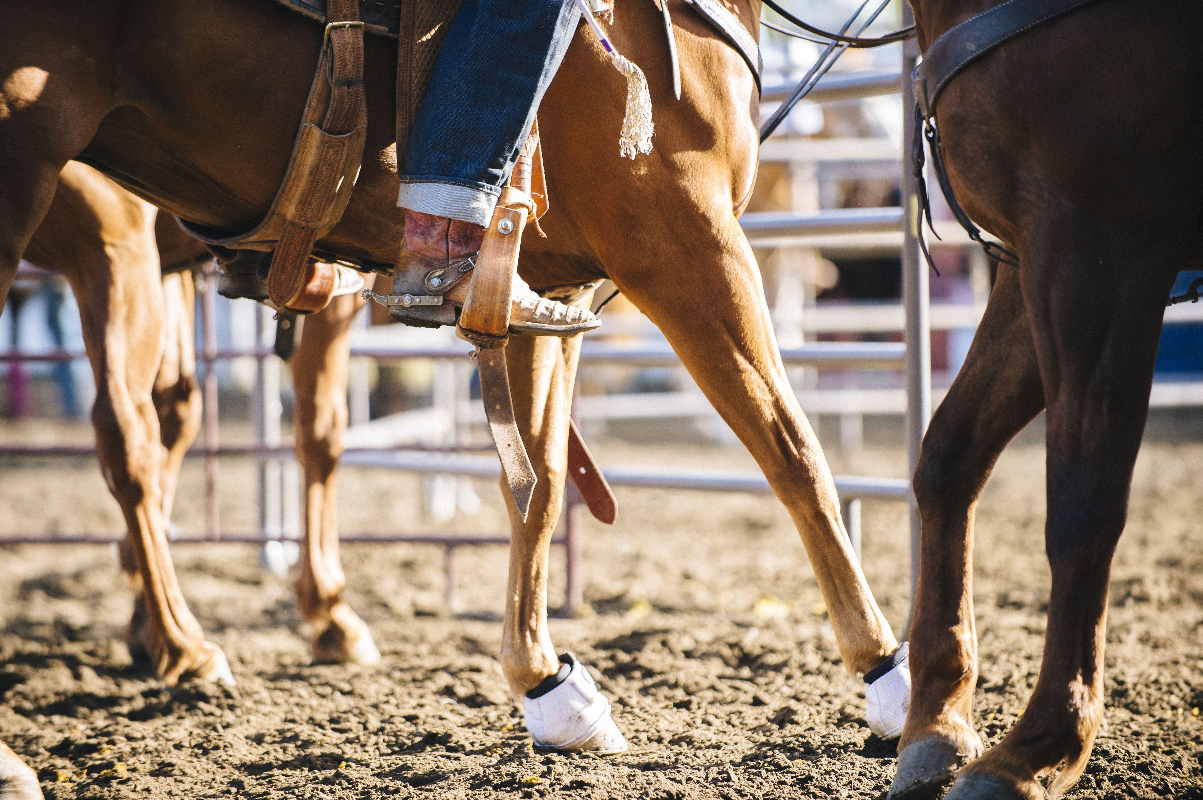 Caucásica vaquera montando a caballo en el rancho