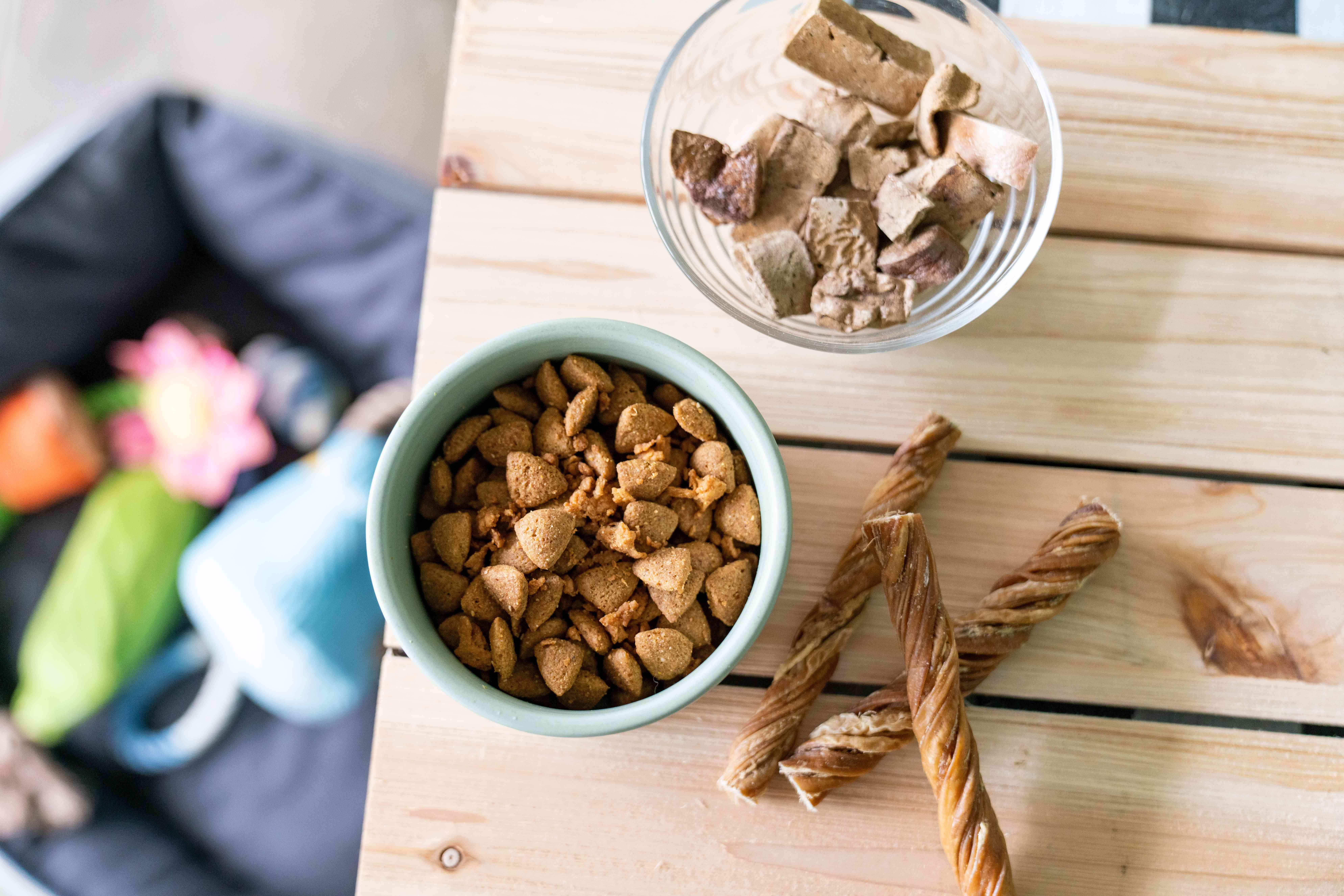 food and dog treats