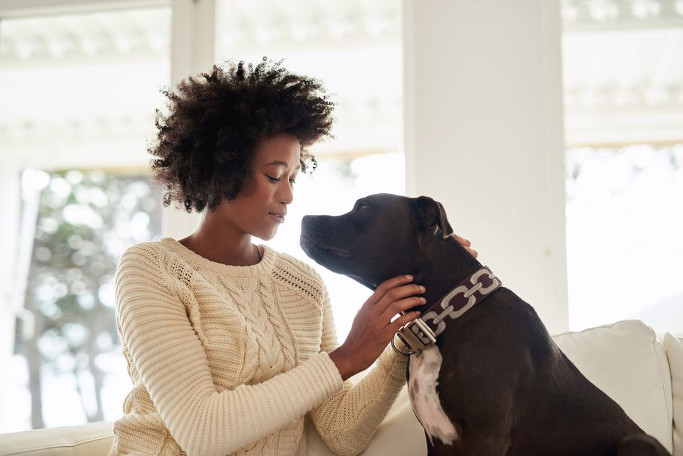 Woman petting black terrier