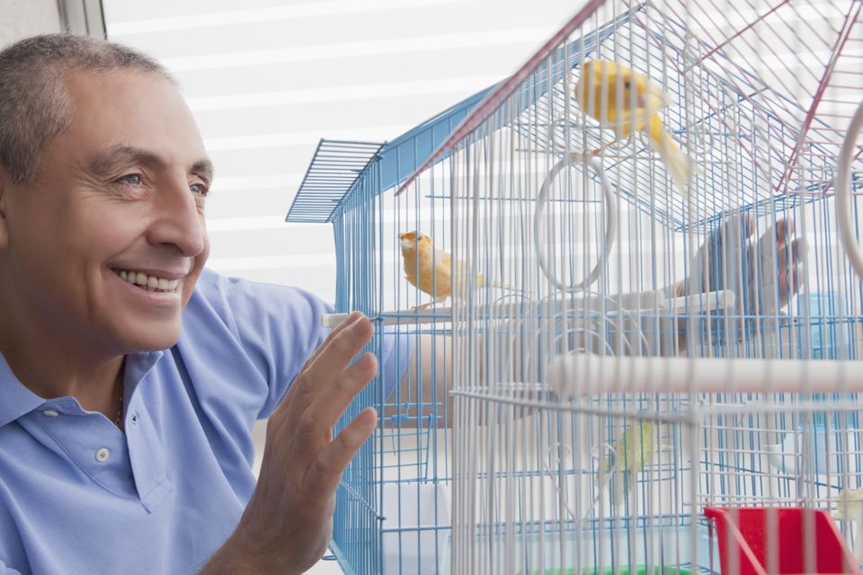 Smiling Hispanic man admiring birds in birdcage