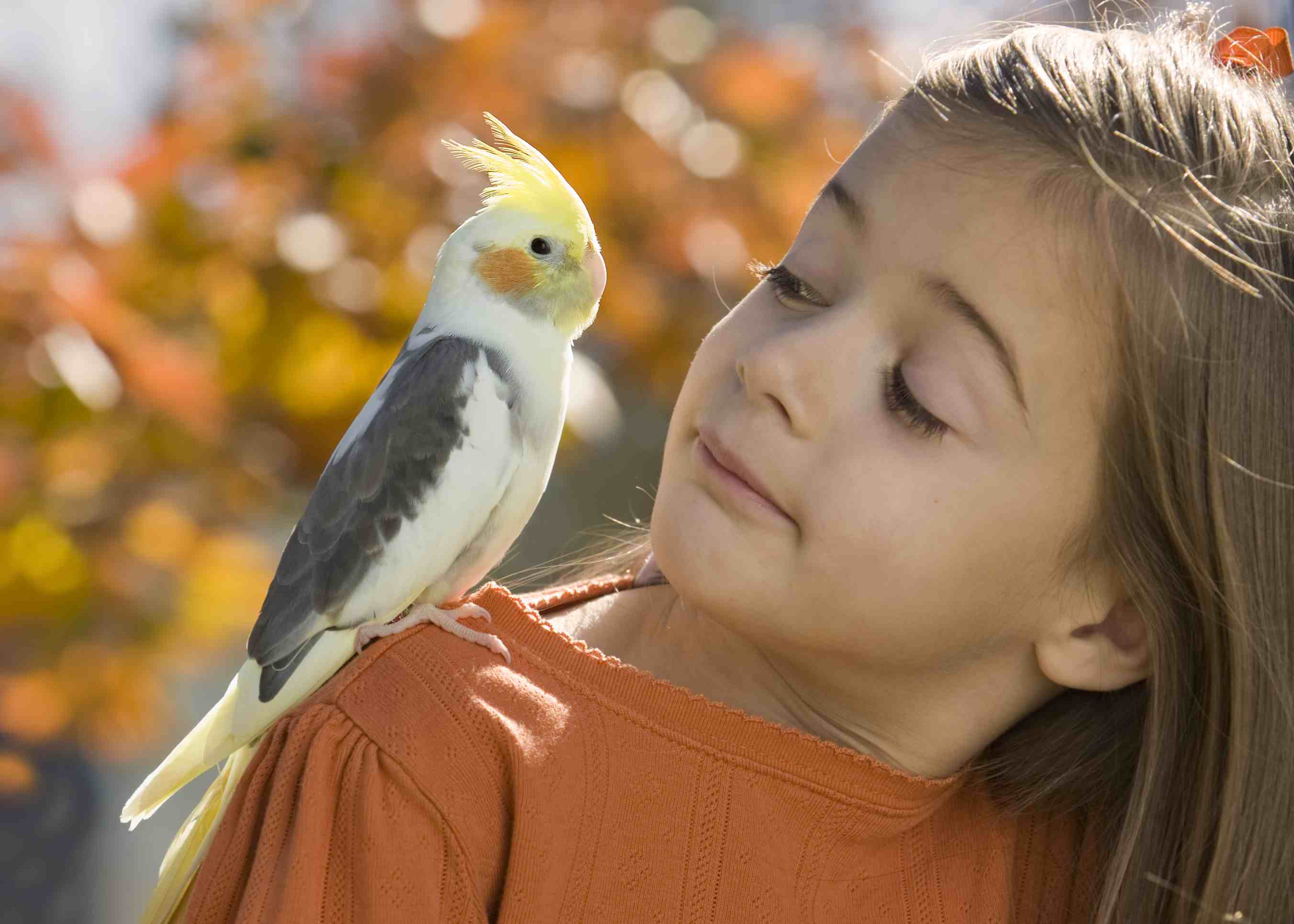 Girl with a cockatiel sitting on her shoulder