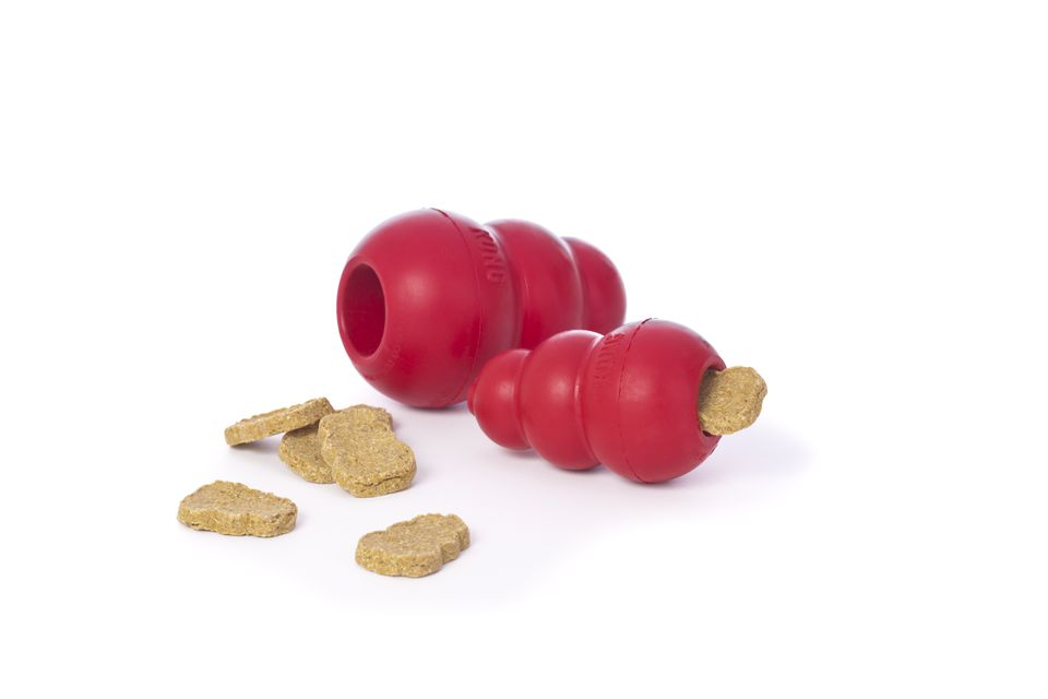 Kong Dog Toys and Treats
