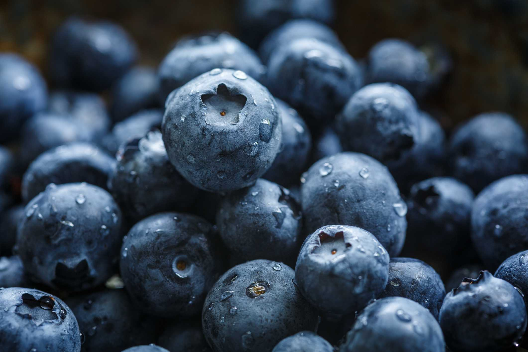 Vitamin Rich Foods For Pet Birds