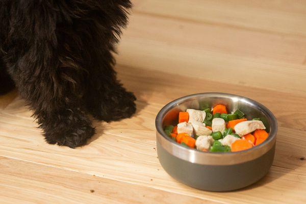 Metal bowl with homemade dog food next to black dog paws