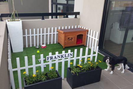 Create A Puppy Garden