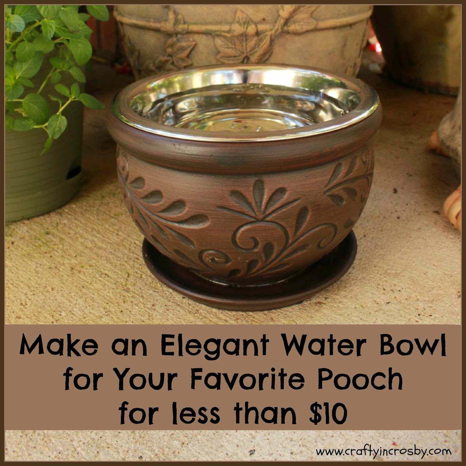 Terrace dog bowl
