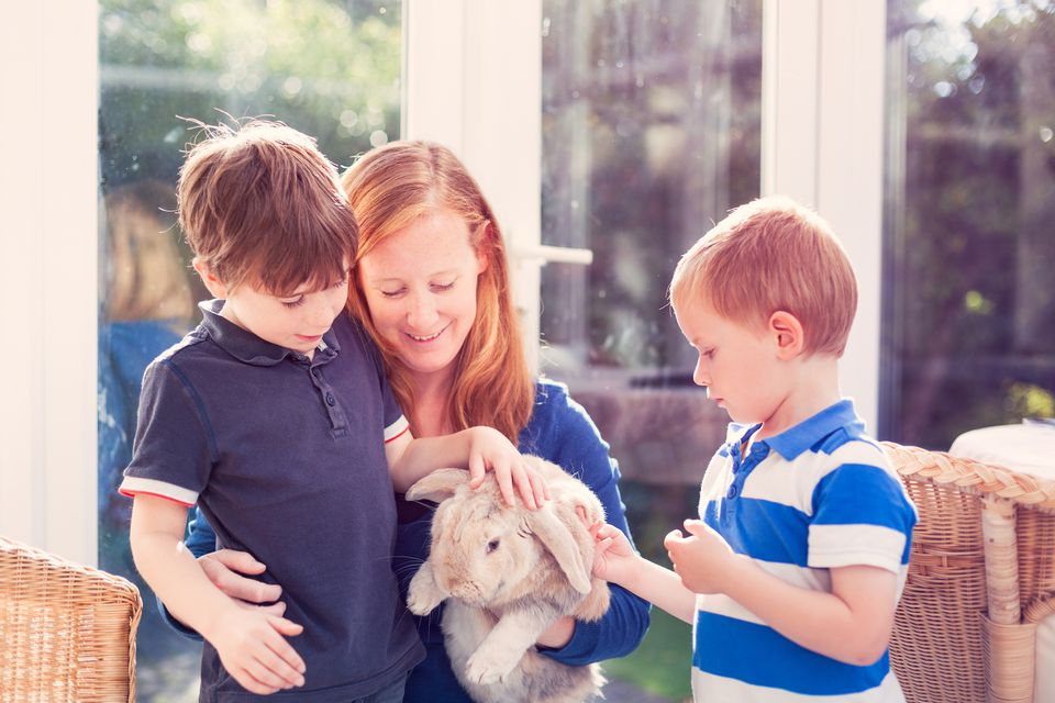 Madre e hijos acariciando a un conejo
