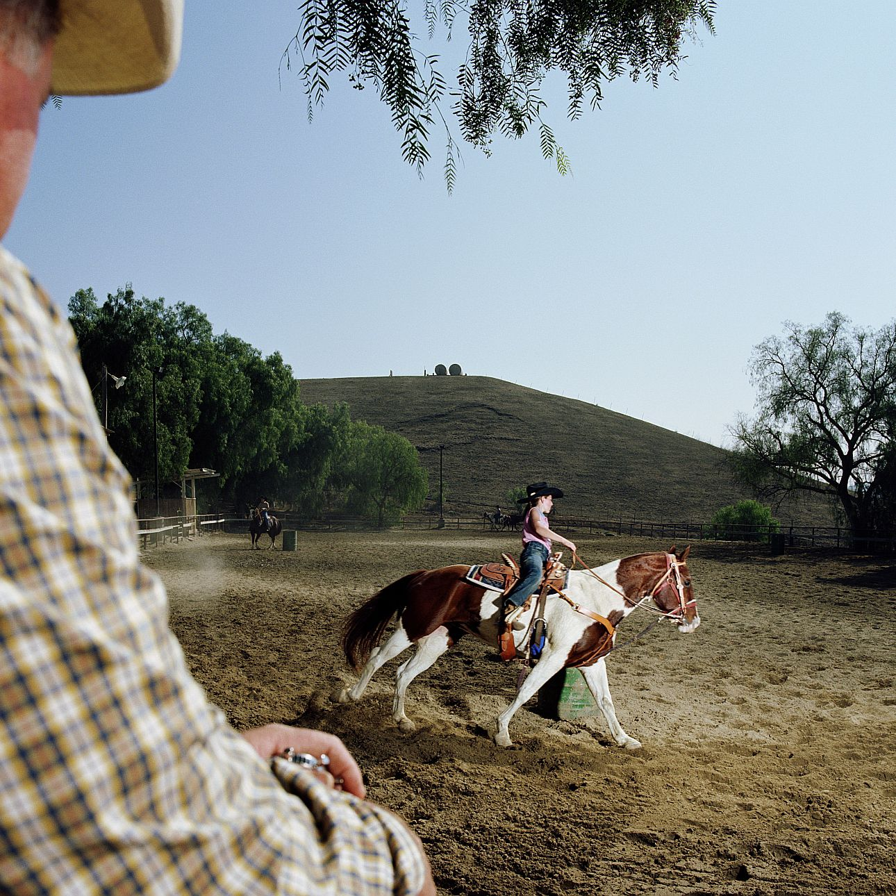 Buying Your First Horse Is Older Or Younger Better