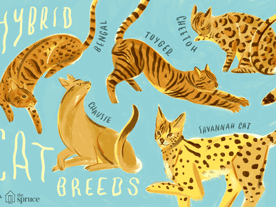 Serval Cat - Full Profile, History, and Care