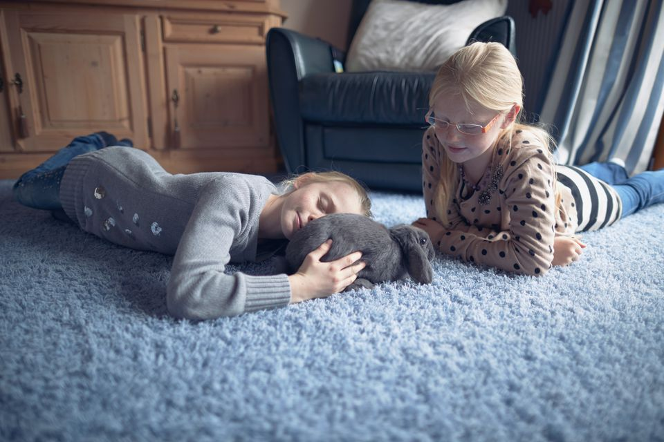 Two kids playing with rabbit on carpet