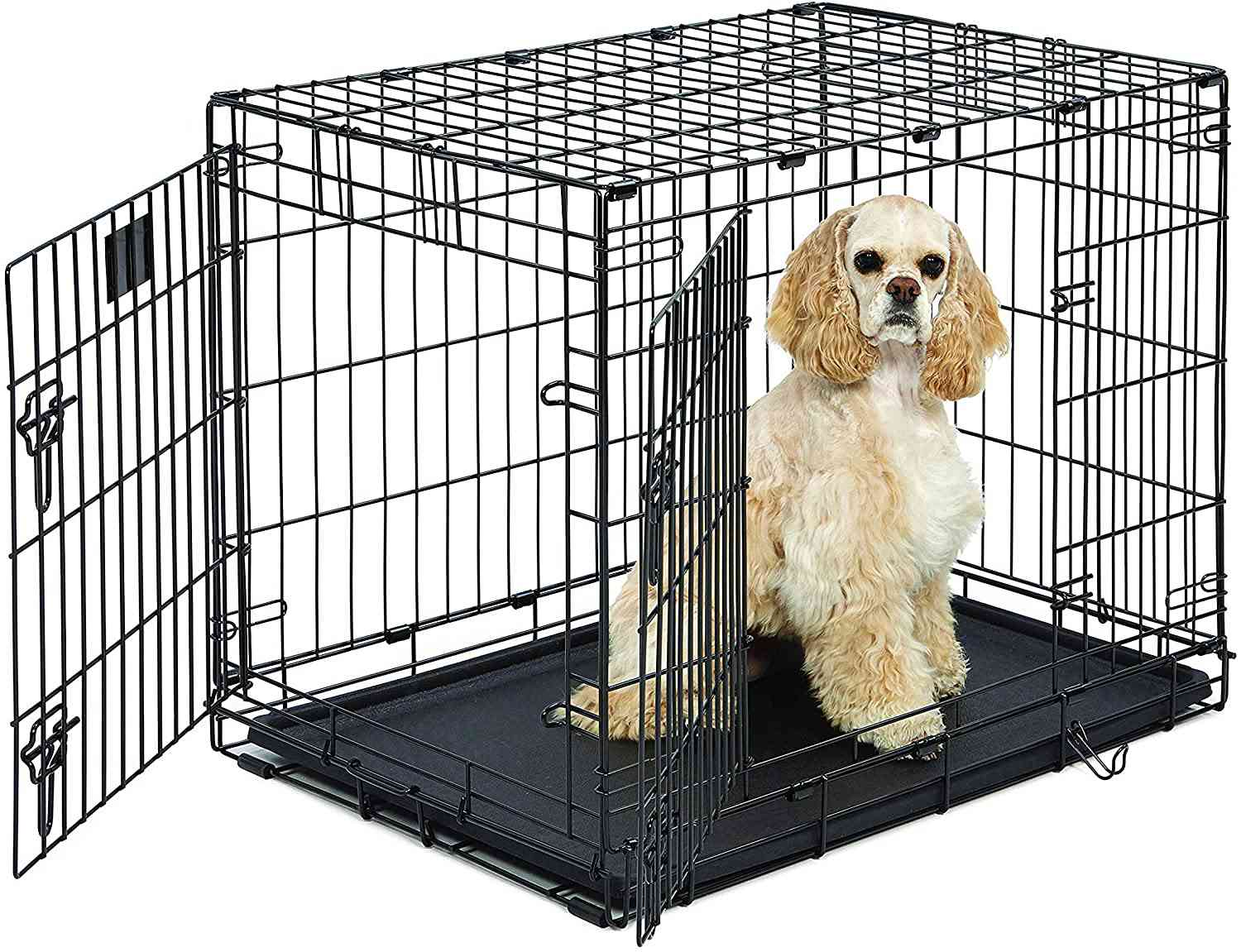 MidWest Homes for Pets Stages Dog Crate