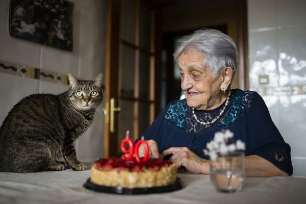 Senior woman celebrating ninetieth birthday with her cat