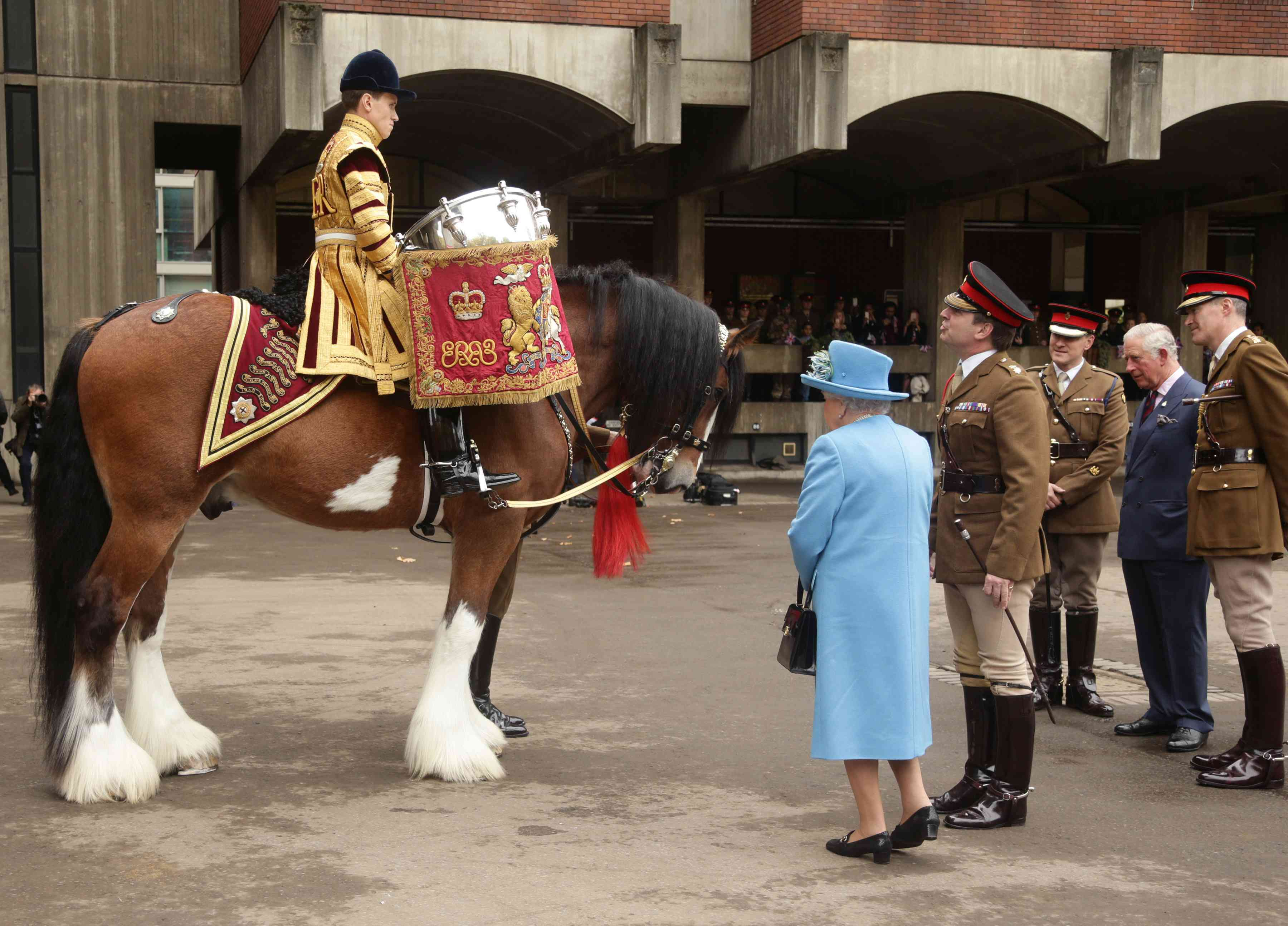 Bay Drum Horse being viewed by the Queen after a procession
