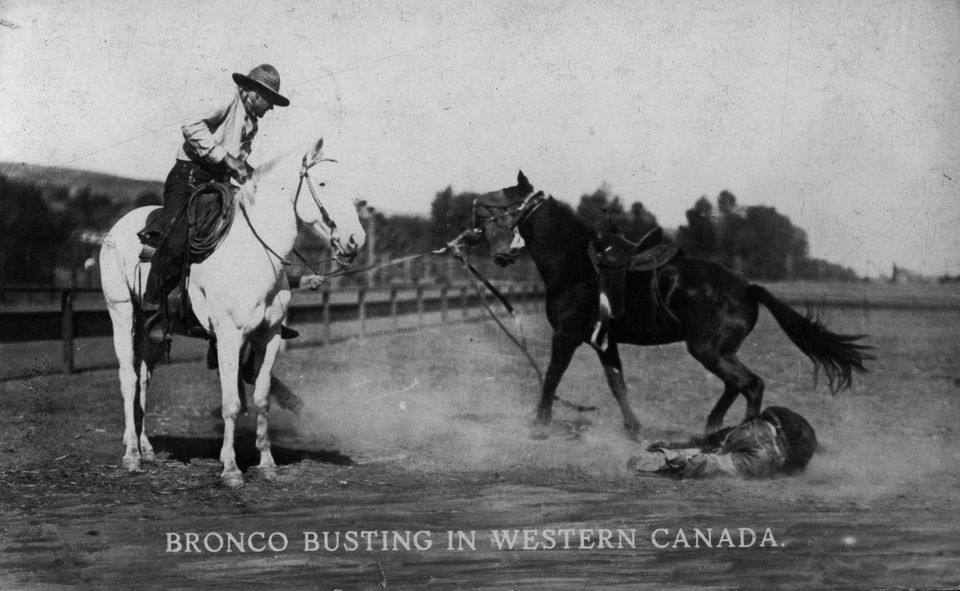 Old West horse breaking