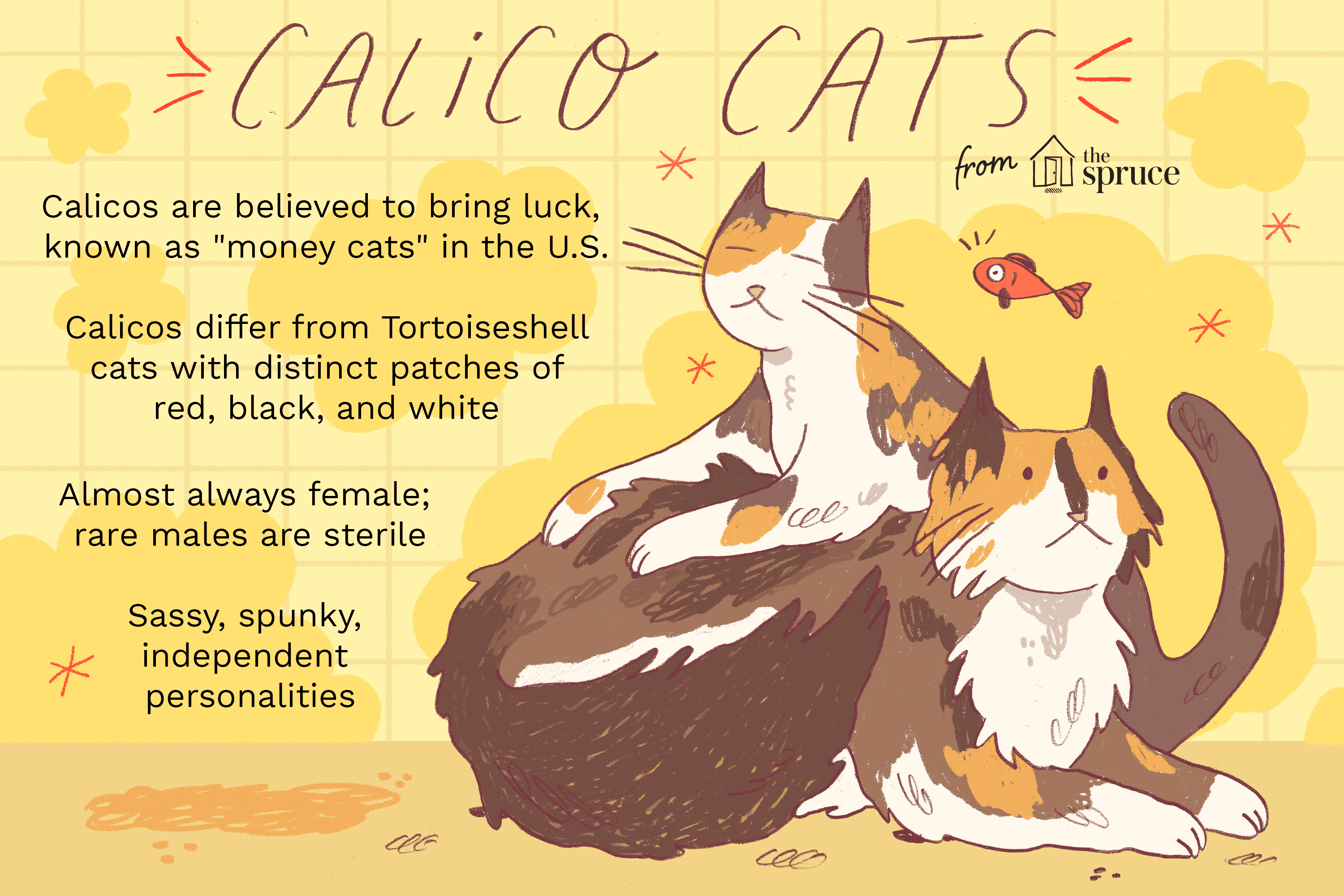 illustration of calico cats profile