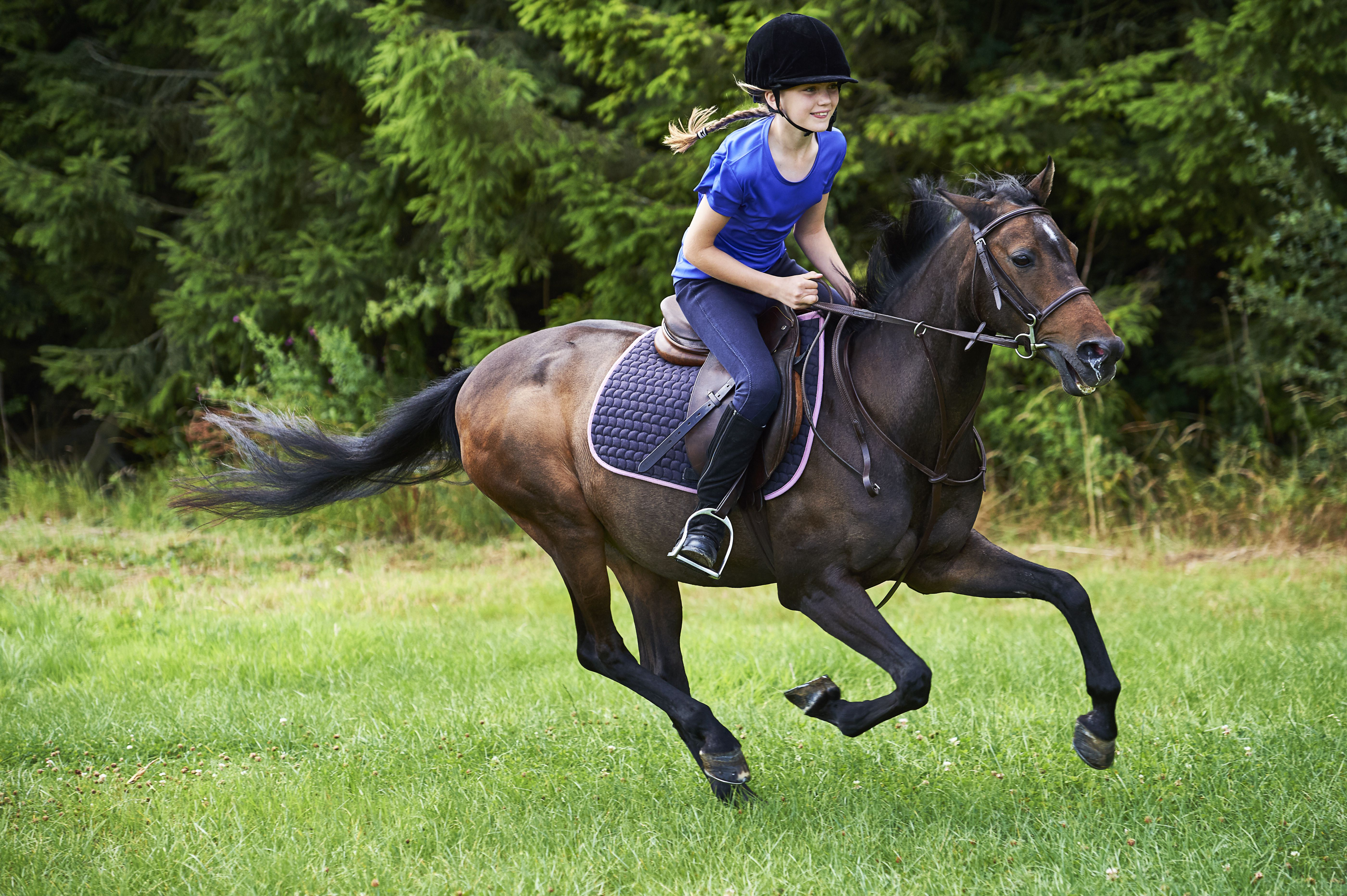 How To Ride A Horse Safely Western Saddle Diagram