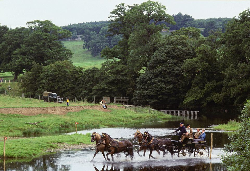 Horses pulling carriage across water obstacle