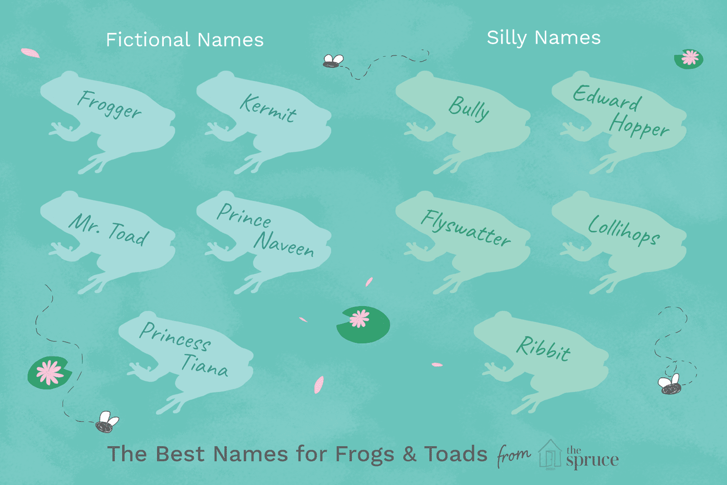 Names for Pet Frogs and Toads