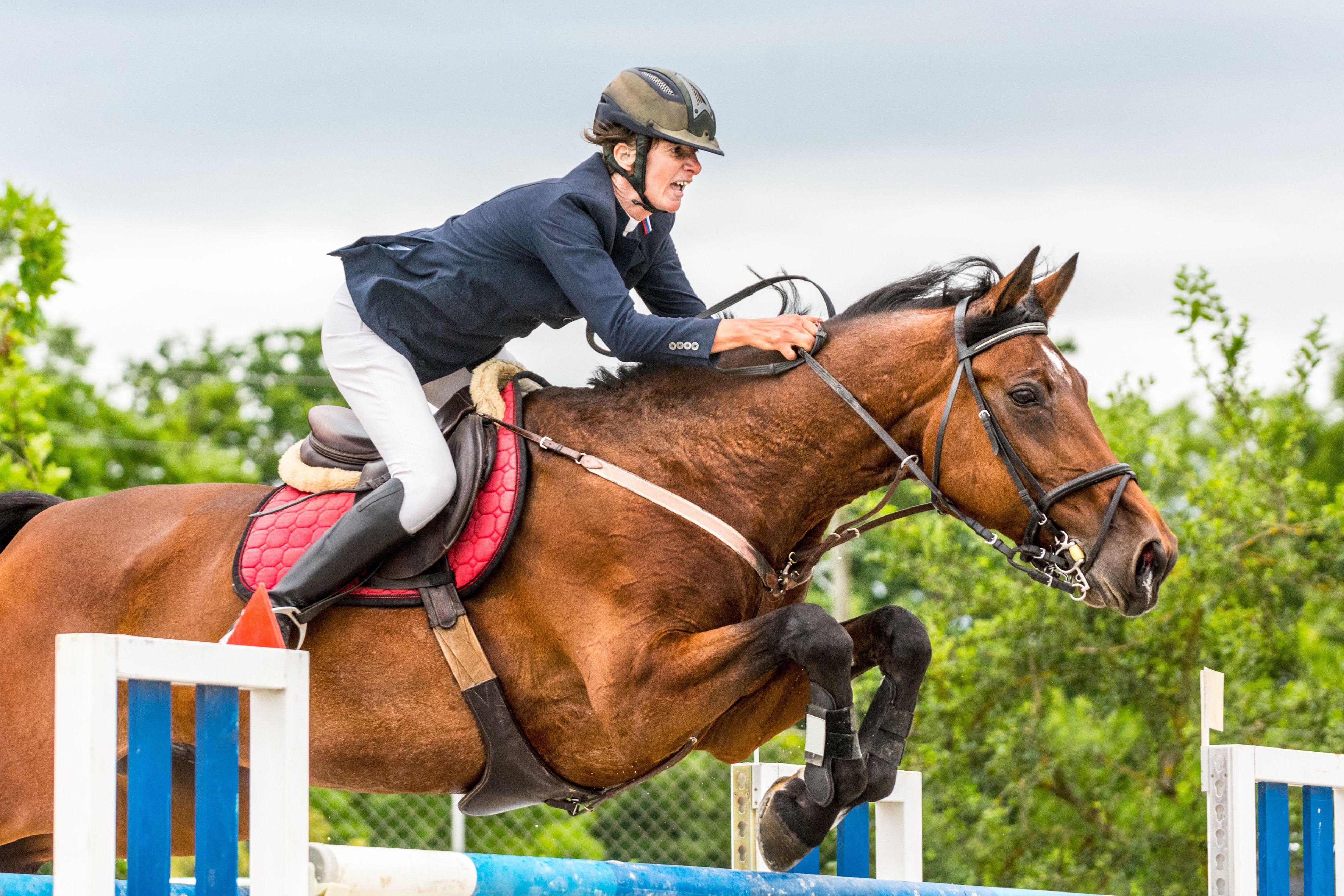 Un caballo con un jinete saltando sobre un obstáculo.