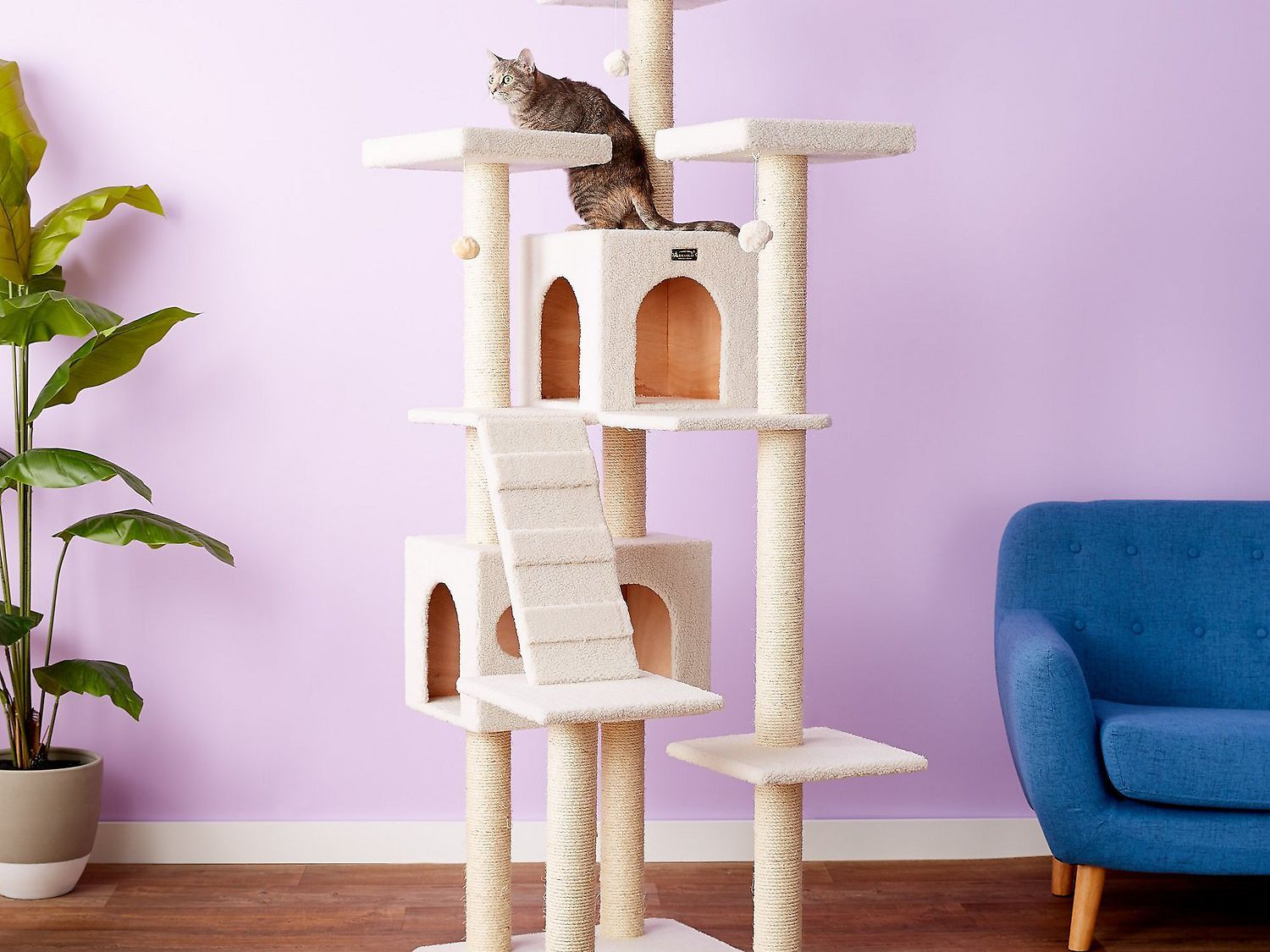 The 8 Best Cat Trees Of 2021