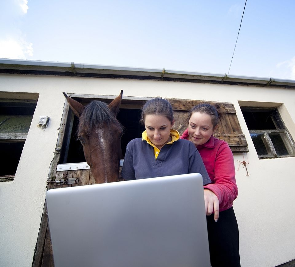 Two young women looking at laptop computer with horse looking over their shoulders.