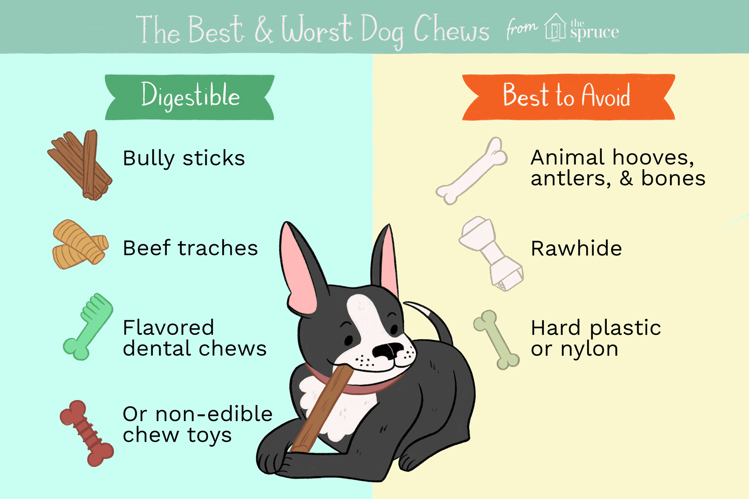 How To Choose The Best Dog Chews