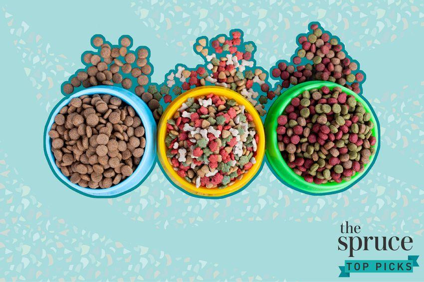 Best Dog Foods for Sensitive Stomachs