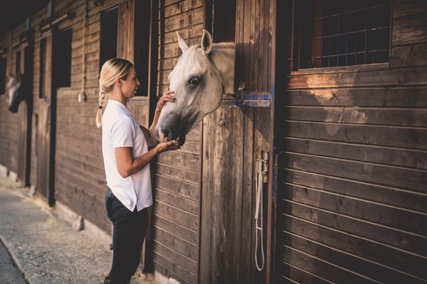 Woman with horse at stable