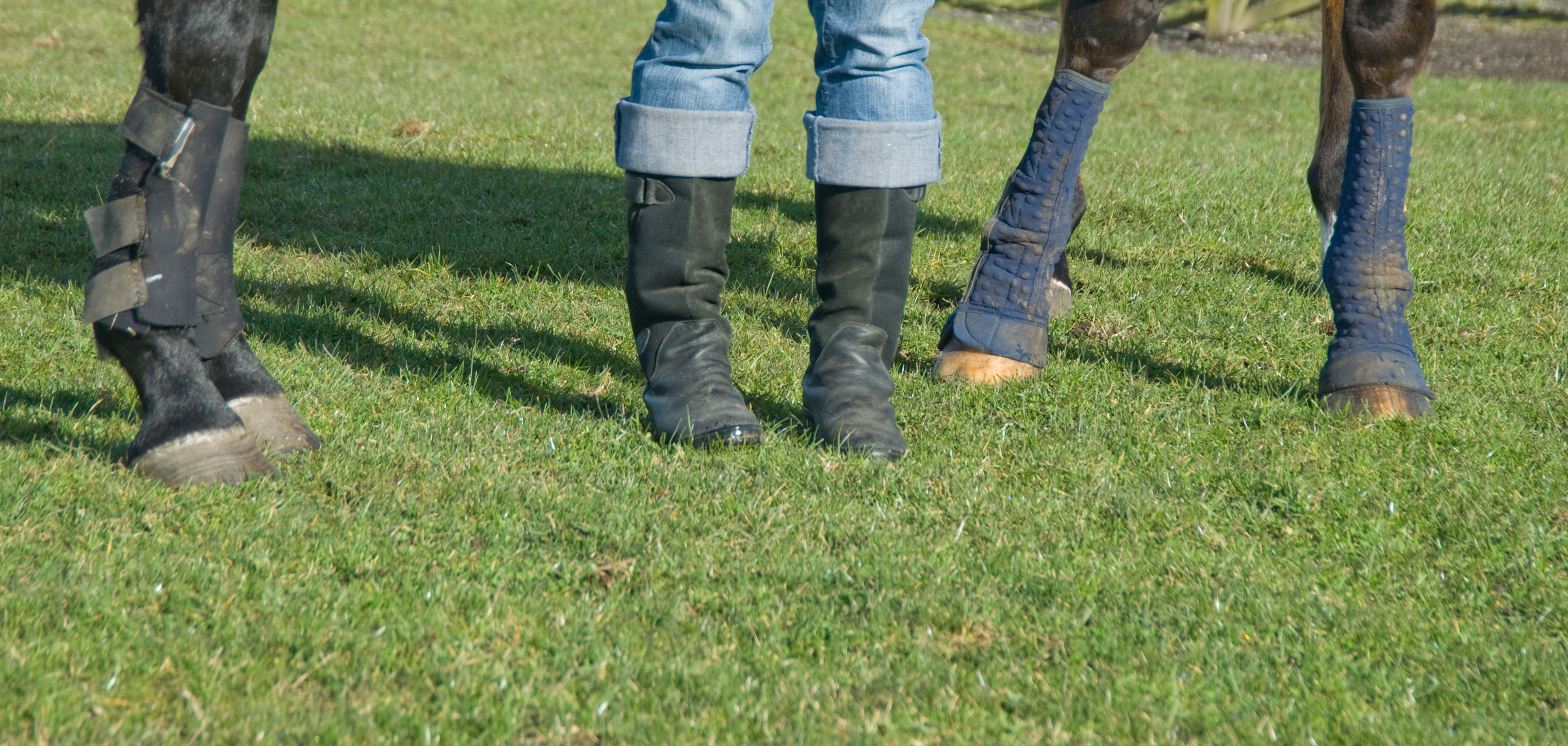 Horse pads and womens boots